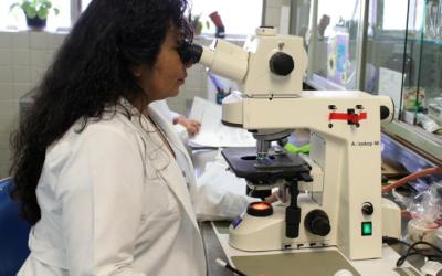 DNA Analysis and Nutrigenomics